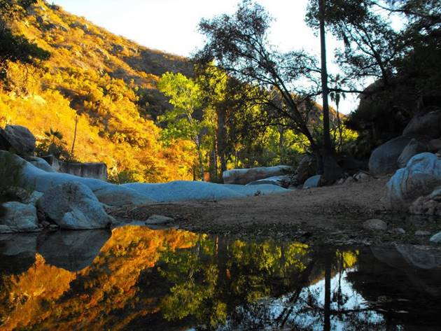 Sierra de Laguna waters provide a natural pond 15 miles to the northeast of Casa Oasis Todos Santos Vacation Rental